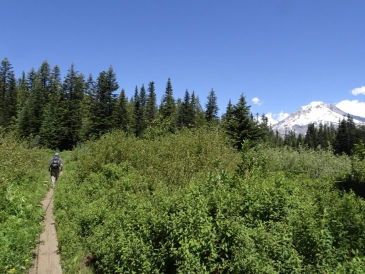 Trail around Mirror Lake