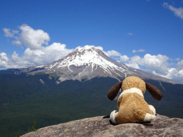 A front row seat view of Mt Hood from the summit