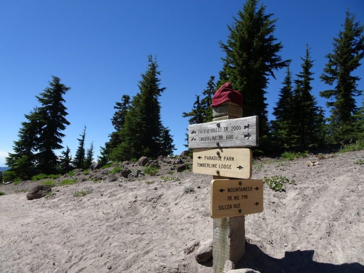 To get to Zigzag Canyon, take Timberline Trail (Pacific Creat Trial) toward Paradise Park