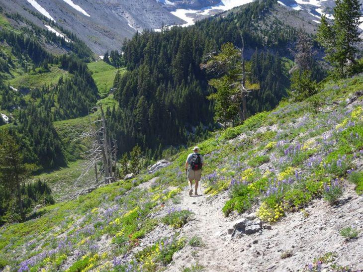 Descending to Clark Creek
