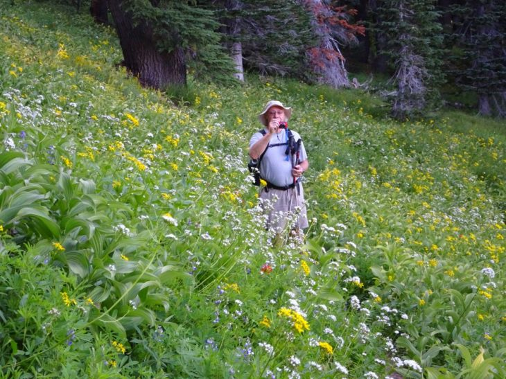 Another meadows section during coming down the mountain
