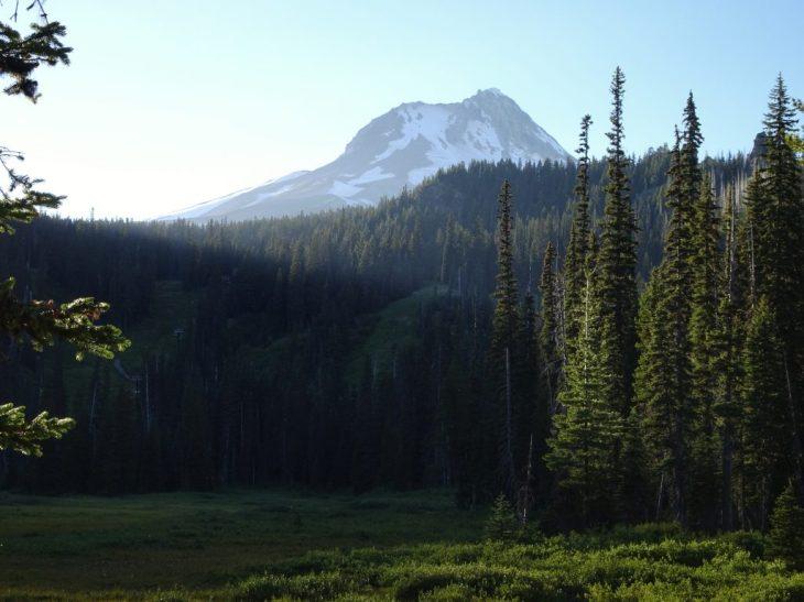View of Mt Hood near trailhead