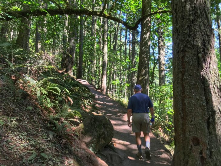 Lower section of Spencer Butte Trail is shady, great for a hot day.