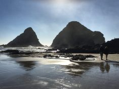Beach at Heceta Head