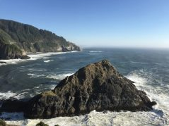 View from Heceta Head Lighthouse