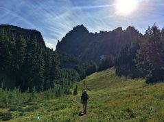 Canyon Creek Meadows with Three Fingered Jack in the background