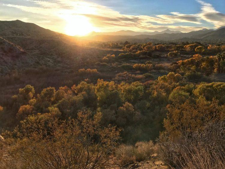 Sunset at Big Morongo Canyon