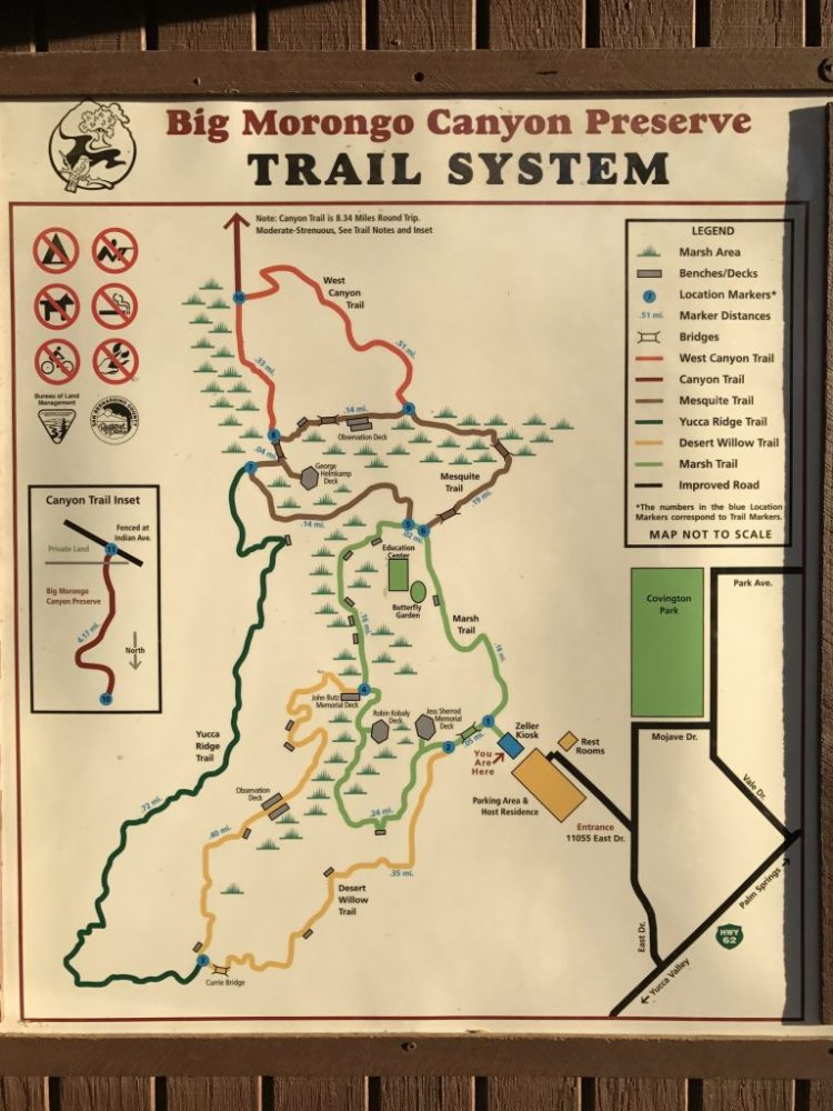 A map of trails in Big Morongo Canyon