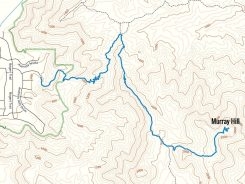 Map of Murray Hill Trail