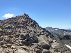 The summit of Mt Tallac is pretty much a pile of these big rocks.