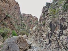 Slickrock canyon walls near the Window