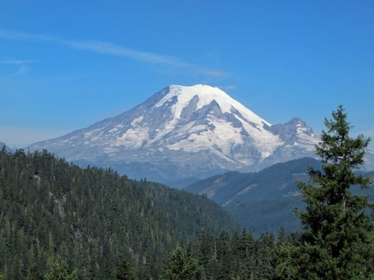 First glimpse of the majestic Mt Rainier above the forest