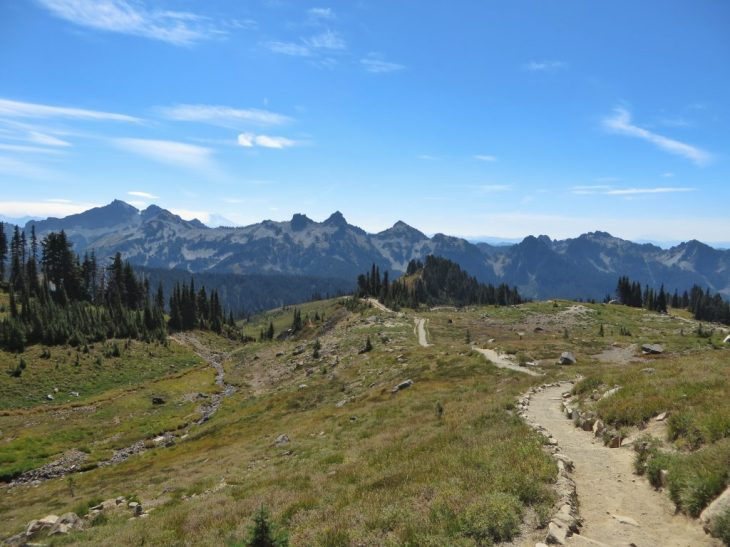 Looking back toward Tatoosh Range from Skyline Trail